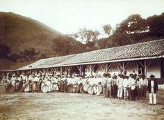 Marc Ferrez registra  escravos em uma fazenda de café na Serra da Mantiqueira - 1885