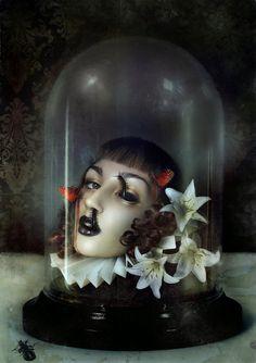 Celia's bell jar
