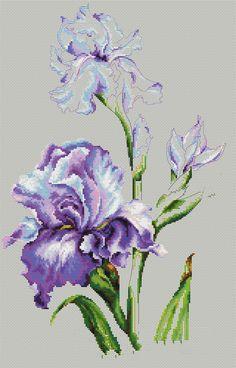 X Stitch Iris Design photo