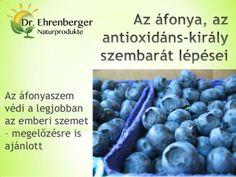 Az áfonya, az antioxidáns király szembarát lépései   http://www.dr-ehrenberger.hu/afonya_az_antioxidans-kiraly_szembarat_lepesei/