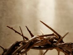 """""""And when they had platted a crown of thorns, they put it upon His head, and a reed in His right hand: and they bowed the knee before Him, and mocked Him, saying, Hail, King of the Jews! Matthew 27:29"""