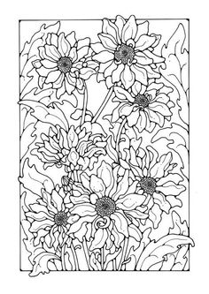 Coloring page chrysanths - img 27750.
