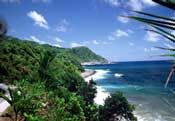 Dominica-Jungle Bay Resort