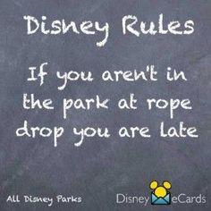 Rope Drop tips for Disney World's Magic Kingdom.