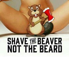 Shave the beaver not the #beard  #beardgoals #beardgang #beardedbasturds #killtheshave #beardsofinstagram #funny