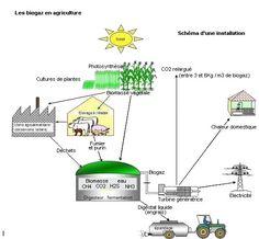 Schéma de production agricole du biogaz