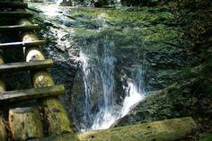 Slovenský Raj, Atrakcie, Možnosti trávenia voľného času | Hotel Petra Hrabušice Pathways, Waterfall, Petra, Outdoor, Unique, Outdoors, Paths, Waterfalls, Outdoor Games