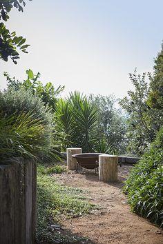 Coledale Dry Garden, Garden Pool, Terrace Garden, Garden Spaces, Australian Garden Design, Australian Native Garden, Coastal Gardens, Italian Garden, Felder
