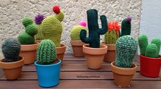 These are already sold! Cactus Planta, Crochet Cactus, Textiles, Knits, Dots, Amigurumi, Creative Workshop, Cactus, Fabrics