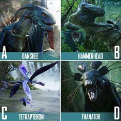 Animals of Pandora | Avatar