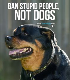 Ban stupid people, not dogs #spartadog #dogs #quotes
