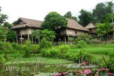 Ce circuit Mai Chau Trek de deux jours commence à Hanoi avec le transfert en voiture de votre hôtel à Mai Chau (3.5 heures).
