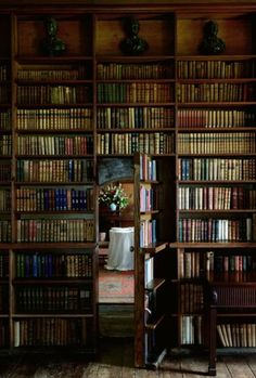 This gorgeous bookshelf comes complete with a door to a secret room..., home library