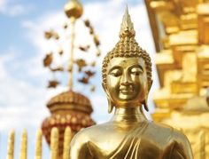 Trekking in Chiang Mai, explore Thailand's lush jungle areas, go rafting on the Mae Taeng river - visit Thailand on an active adventure tour through Chiang Mai. Visit Thailand, Thailand Travel, Temple Thailand, Golden Buddha Statue, Green Scenery, Buddhist Art, Beautiful Lines, Chiang Mai, Free Illustrations