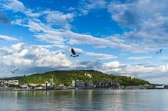 View of Ekeberg from harbour, Oslo, Norway. - Carlos Sanchez Pereyra/Photographer's Choice RF/Getty Images