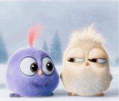 With Tenor, maker of GIF Keyboard, add popular Angry Birds animated GIFs to your conversations. Share the best GIFs now >>> Angry Birds, Cartoon Cartoon, Cartoon Movies, Cute Gif, Funny Cute, Vogel Gif, Gif Mignon, Cartoon Mignon, Gif Lindos