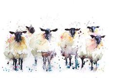 This is a limited edition (only 250 will be produced in each size) print of my original watercolour painting black faced sheep. I sign and number each print individually on the front and sign and date on the reverse and place in a cellophane bag. The print comes unmounted and unframed, ready for you to add a mount and frame of your choice. Welcome to my shop. Here you will find original watercolour paintings and archival quality prints. With an emphasis on quality and integrity, I use the…