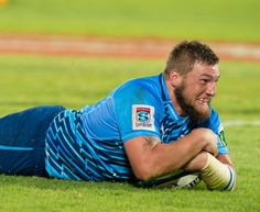 Bok props Greyling and Kruger extend Bulls contracts Rugby News, Rugby Players, Boyfriend Material, Scores, Bear, Men, Bears