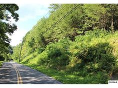 16+ acres that is centrally located between Pigeon Forge and Gatlinburg. Perfect for putting a few cabins, building a new home or for recreational activities.   Brandon Williams Your Agent in the Smokies! REALTOR® / Affiliate Broker / MBA License # 302107 Brandon@youragentinthesmokies.com www.youragentinthesmokies.com 865-806-9005 Mobile 865-908-4567 Office  865-280-1433 Fax 400 Park Rd, Suite 209 Sevierville, TN 37862