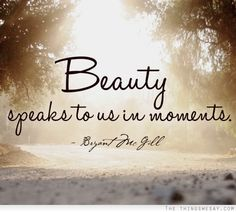 Beauty speaks to us in moments