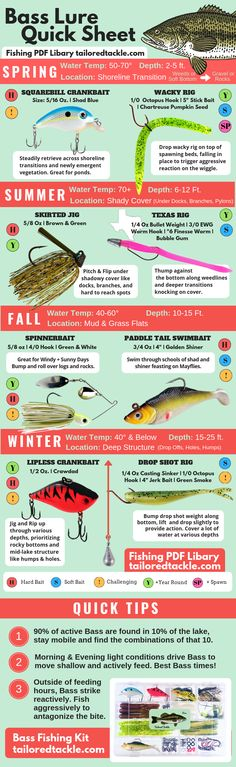Bass Fishing Lure Diagram – Fishing Tips Infographic Bass Fishing Lure Diagram – Fishing Tips Infographic to help you choose the right Bass Fishing Lure in the Spring, Summer, Fall, and Winter, and the proven techniques to help you catch more Bass! Bass Fishing Lures, Fishing Knots, Sport Fishing, Gone Fishing, Kayak Fishing, Walleye Fishing, Carp Fishing, Fishing Tackle, Saltwater Fishing