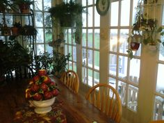 My sunroom filled with plants- like my entire house!  It's a garden of Eden