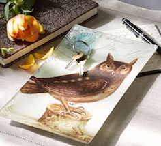 Owl accessory tray