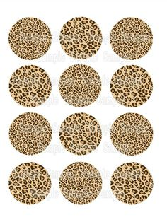 Leopard Print (Tan, Pink or Blue) Edible Printed Cupcake Toppers / Cookie Topper / Brownie Topper - PRE-CUT by EdibleCakePRINTcess