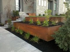 natural rust finish steel planter and retaining modern landscape