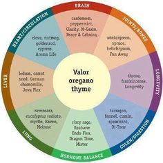 Essential Oils Uses - Wheel Chart....My Member Number: 1458528. or my website.... http://tammy.marketingscents.com/