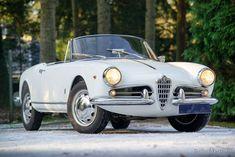 Alfa Romeo Giulietta Spider, 1960 - Welcome to ClassiCarGarage - Classic Cars Alfa Romeo Giulietta Spider, Alfa Romeo Spider, Classic Cars British, Chevy Classic, Old Classic Cars, Classic Car Restoration, Cabriolet, Cute Cars, Cars For Sale
