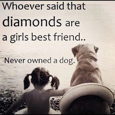 94 Best Furbaby Quotes Images Dog Cat Doggies Cute Dogs