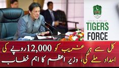 Prime minister ehsaas program,Prime Minister, from today, 1 million families will be divided into 12 thousand per person Cash Program, Online Registration, International News, Apply Online, Prime Minister, One In A Million, Programming, Families, Divider