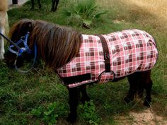 Regular Miniature Mini Donkey Pony Horse Foal Winter Blanket Pink 51908