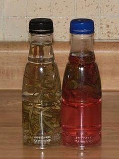 Rosemary & Basil/Oregano herbal vinegars