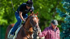 I'll Have Another trains for the Preakness Stakes