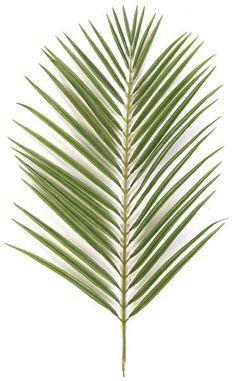 Silk Areca Palm Branch Stem Tone Green (pack of