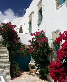 The Greek islands are undoubtedly some of the most beautiful islands in Europe. More than 5000 individual islands surround the mainland coast of Greece, Wonderful Places, Beautiful Places, Best Greek Islands, Bougainvillea, Future Travel, Beautiful Islands, Cool Photos, Amazing Photos, Places To Go