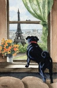 Paris BLACK PUG Dog Signed Art...