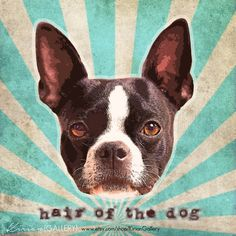 """Party Animal! It's a """"Hair of the DOG"""" kind of day. Cheers"""