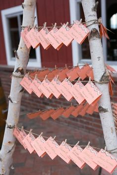 Cloud 9 coral and chevron escort cards