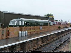 Class 35 D7017 Hymek Diesel-Hydraulic by graham.wood.14661