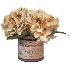 Creative Displays, Inc. Hydrangea in French Pot