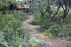 Chelsea Flower Show 2015.  A Perfumer's Garden in Grasse by James Basson, a gold medal-winning fragranced garden for L'Occitane