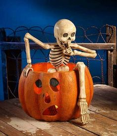 Creeping Skeleton Hiding in Pumpkin - Large Bethany Lowe Halloween Jack-O-Lantern Centerpiece bethany lowe halloween Retro Halloween, Vintage Halloween Decorations, Halloween Jack, Outdoor Halloween, Holidays Halloween, Halloween Pumpkins, Halloween Crafts, Halloween Camping, Skeleton Decorations