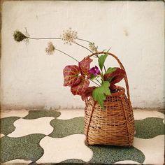 "Chabana (茶花, literally ""tea flowers"")"