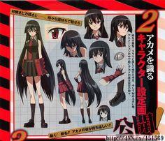 'Akame ga KILL!' Anime Adaptation Casts Lead Actress