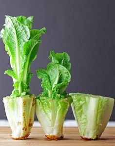 6 Veggies You Can (Actually) Regrow from Scraps