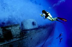 Start your #dive course for free online. Don't hesitate & start your course today. Only @greenwichdiving.com #buceo