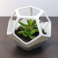 Dodecahedron, Planter, 3D Terrarium, 3D Printed Home Decor, Sacred Geometry, Geometric Cactus Planter, 3D printed Planter Pots,